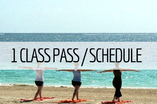 1 Class Pass & Schedule of Fitness Classes